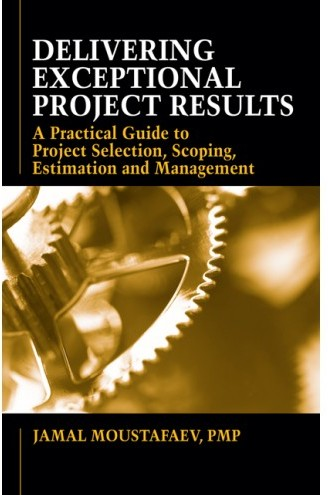 Delivering Exceptional Project Results book